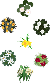 Flowers, Garden, Floral, Bushes, Landscaping, Gardening