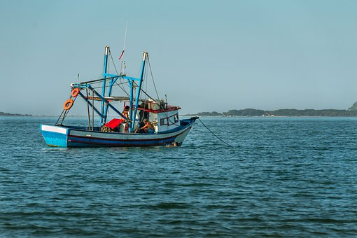 Fishing, Fishing Boat, Fisherman, Boat, Sea, Ocean, Sky