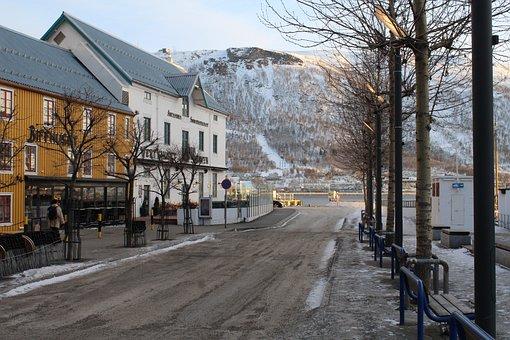 Street, Trees, Snow, City, Winter, Cold, Night