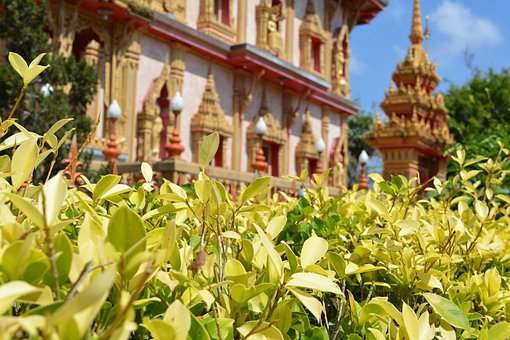 Temple, Church, Cathedral, Building, Buddhist, Thailand
