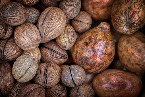 Coconut, Nutmeg, Nuts, Healthy, Spice, Shell, Seeds