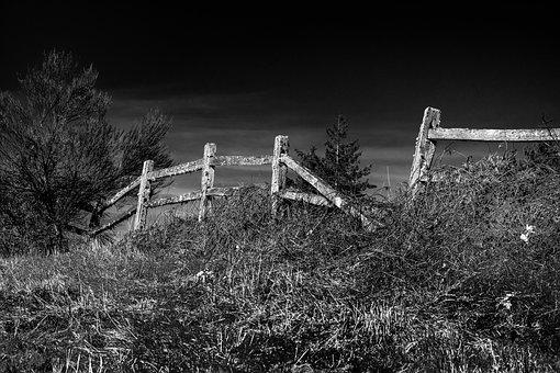 Wooden Fence, Black And White, Weathered