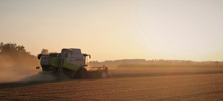 Tractor, Excavator, Machinery, Agriculture, Field