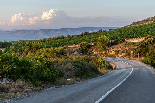 Wine, Hills, Croatia, Vineyard, Viticulture, Landscape