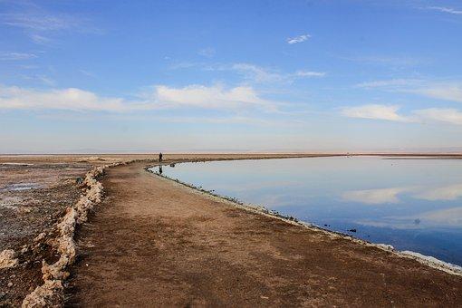 Laguna, Arid, Highlands, Person, Reflection, Flamenco