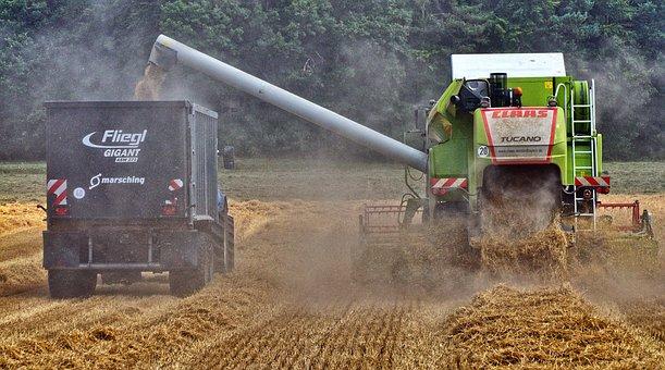 Combine Harvester, Tractor, Trailers, Harvest, Crops