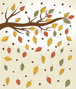 Autumn, In The Fall, Season, Forest, Foliage, Tree