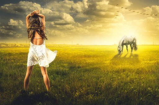 Girl, Horse, Field, Grass, Sunset, Sun, Vegetation