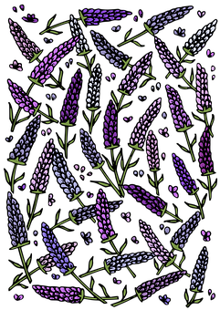 Lavender, Flowers, Pattern, Template, Decorative