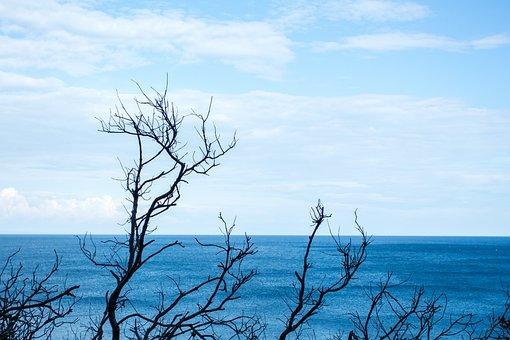 Background, Sea, Horizon, Silhouette, Water, Nature