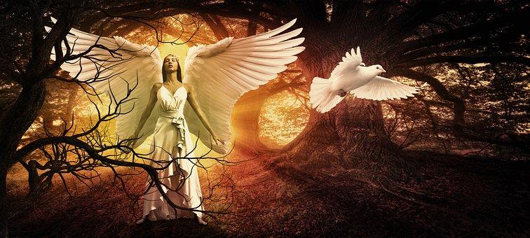 Woman, Angel, Fantasy, Female, Girl, Beautiful