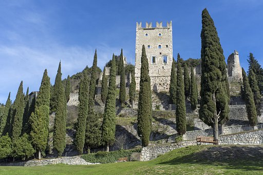 Trees, Castle, Construction, Old, Middle Ages
