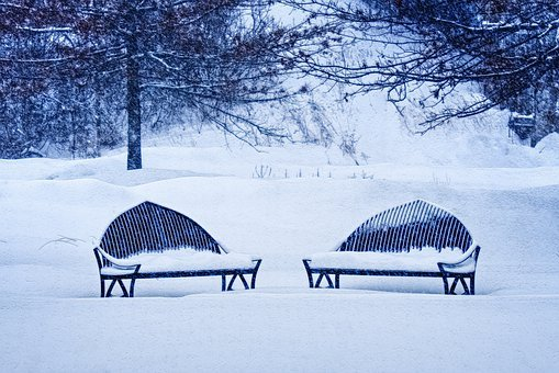 Bench, Snow, Ice, Frost, Frozen, Cold, Trees, Branches
