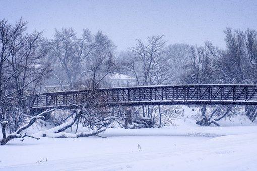 Bridge, Snow, Trees, Forest, Winter, Ice, Frost, Frozen