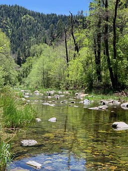 Creek, Oak Creek, Forest, Woods, Scenic, Water, Rocks