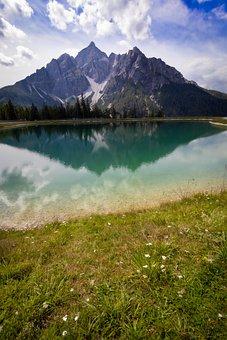 Mountain, Pond, Lake, Grass, Flowers, Reflection