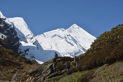 Uatarakhand, Snow Mountain, Mountain Range, Hiking