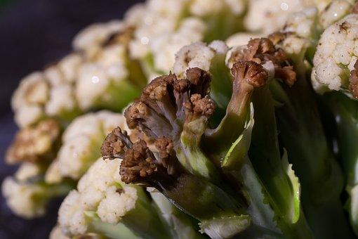 Bacterial Soft Rot, Cauliflower, Disease, Closeup