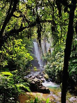 Costa Rica, La Paz Waterfall Gardens, Waterfalls