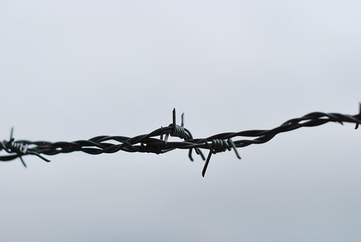 Barbed Wire, Fence, Barrier, Security, Obstacle