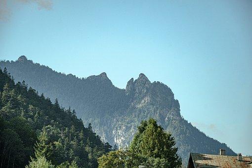 Mountains, Summit, Alpine, Forest, Trees, Foliage
