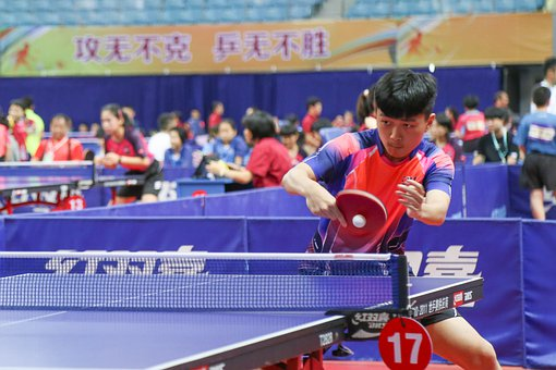 Ping Pong, Youth, Table Tennis, Boy
