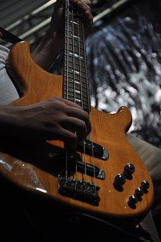 Guitar, Music, Instrument, Show, Musical, Melody, Sound