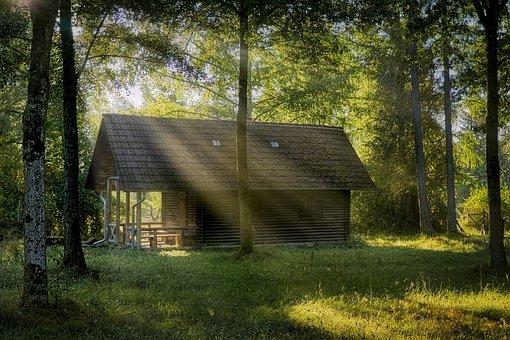 Hut, Forest, Woods, Mystical, Landscape, Nature