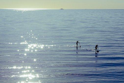 Sea, Stand-up Paddle, Paddling, Paddle Board
