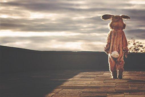 Rabbit, Hare, Bunny, Costume, Animal, Easter, Whimsical