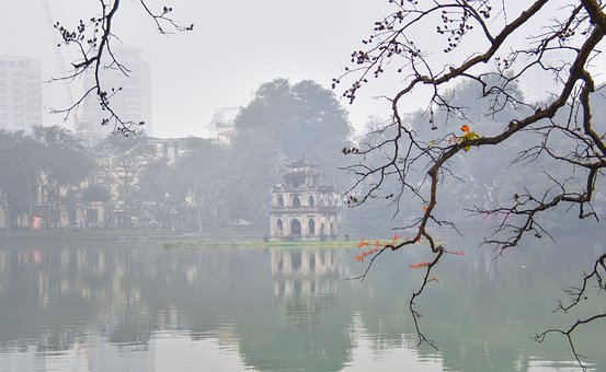 Sword Lake, Hanoi, Vietnam, Langur Tree, Dew, Nature