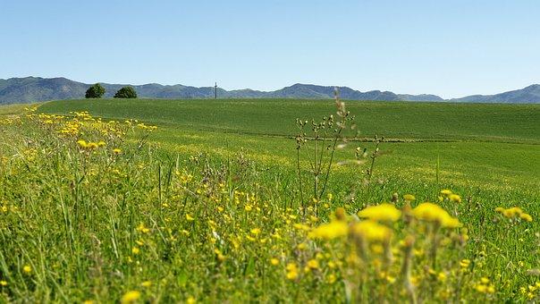 Campaign, Prato, Mountains, Agriculture, Landscape