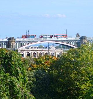 Bridge, Buses, Transport, Trees, Leaves, Foliage