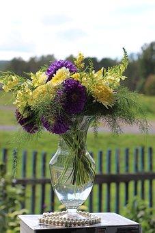 Flowers, Astra, Petals, Bouquet, Floral Arrangement