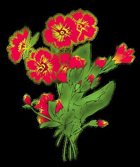 Primula, Primrose, Flowers, Background, Wallpaper