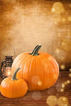 Autumn, Pumpkin, Nature, Bokeh, Still Life, Halloween