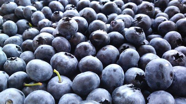 Blueberries, Berries, Fruit, Fresh, Produce, Harvest