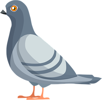 Pigeon, Dove, Bird, Feathers, Animal, Wings, Peace