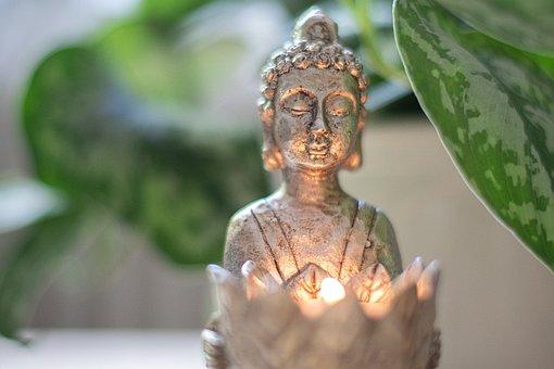 Buddha, Light, Meditation, Spirituality, Plant, Relax