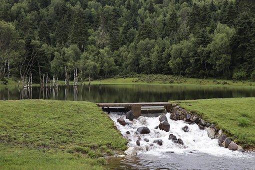 Lake, Stream, Running Water, Water, Nature, Landscape