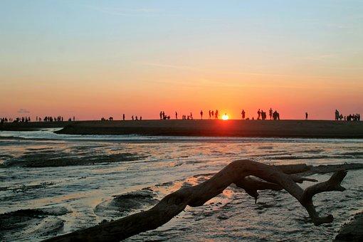 Beach, Silhouette, Sunset, Sun, Sunlight, Dusk