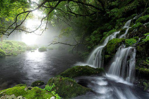 Brook, Spring, Cascade, Waterfall, River, Water, Fog