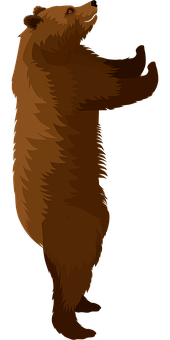 Brown Bear, Bear, Animal, Nature, Fur, Mammal, Grizzly