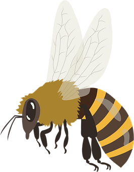 Bee, Bumblebee, Honeybee, Insect, Honey, Fly, Flying