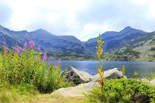 Mountain, Lake, Rocks, Cliff, Flowers, Peak, Nature