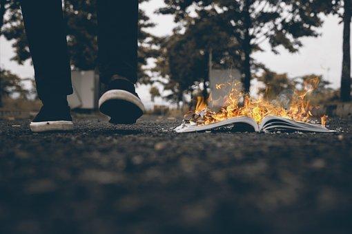 Man, Walking, Burning, Book, Burnt, Nature, Background