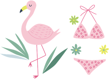 Flamingo, Beak, Bird, Beach, Aquatic, Swimsuit