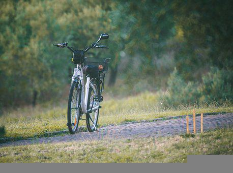 Bicycle, Bike, Sport, Cycling, Fitness, Cycle