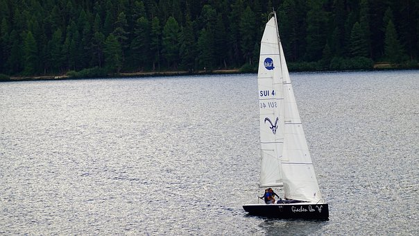 Boat, Sailing Boat, Wind, Sail, Water, Lake, Forest