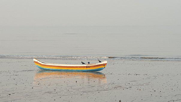 Boat, Beach, Crow, Birds, Sea, Nature, Water, Ocean